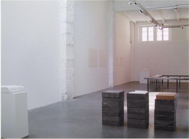 18.06.2003 > 26.07.2003. « Cantata bluia, libro dore ». Pier Paolo Calzolari, Bruno Corà, Pierre Thoretton.